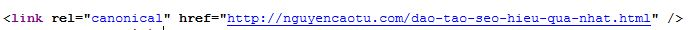 Kiểm tra thẻ canonical đã có trong Code hay chưa ?