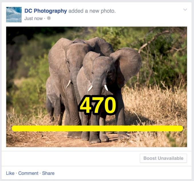 Share photo landscape