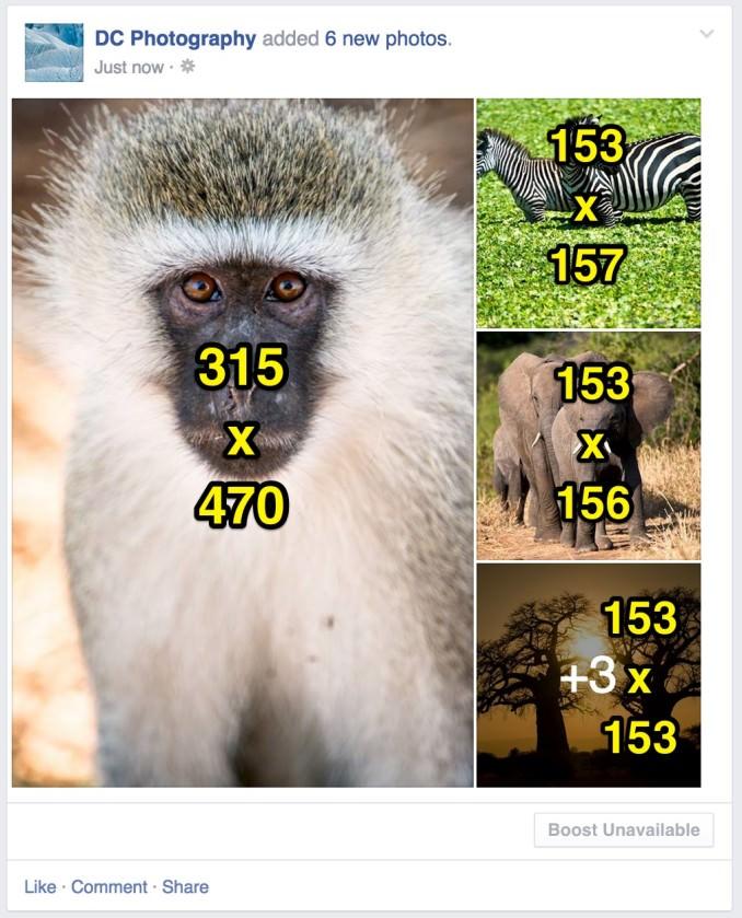 Chia sẻ 4 hình ảnh với ảnh đầu tiên là chân dung