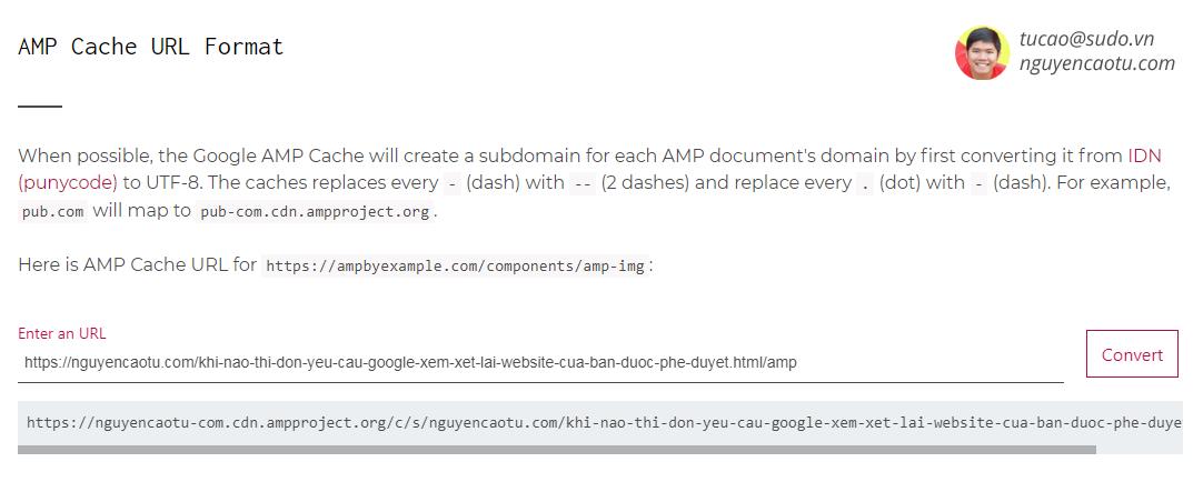 Cập nhật Google AMP Cache