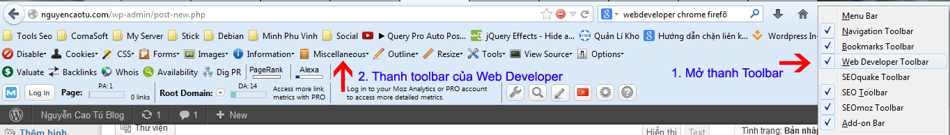 Toolbar Web developer